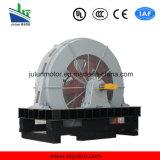 T, мотор Tdmk1600-36/3250-1600kw электрической индукции AC стана шарика Tdmk крупноразмерный одновременный низкоскоростной высоковольтный трехфазный