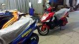 "1500With2000W E-""trotinette"", ""trotinette"" elétrico, motocicleta elétrica (águia)"