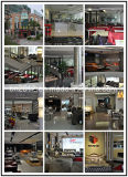 Amerikanische Art-modernes ledernes Sofa (H-2026)