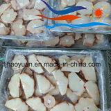 Skinless стейк голубой акулы (BSS002)