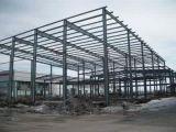 Garage del metal de la estructura de acero y edificio del taller