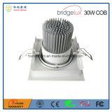 保証3年のの米国Bridgeluxの穂軸30W LEDのスポットライト