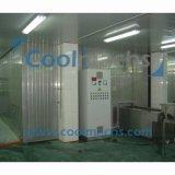 Máquina de congelación de la gamba IQF del camarón/congelador espiral del soplo de aire