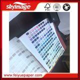 No-Encrespar el papel de la sublimación de 24inch 50GSM para la impresora de alta velocidad Ms-Jp7 (la fabricación)