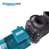 Flb-100 pompe à eau puissante élevée de 3 phases du flux 10HP pour la piscine