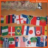 Piccole bandiere nazionali variopinte per le attività esterne