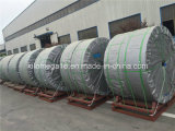 Nastro trasportatore di serie Ep1000/4 esportato nel Marocco