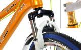 20 Inch 学生のためのマウンテンバイクMTBの自転車山の自転車