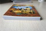 Cahier de papier de livre d'exercice d'élève de papeterie d'école