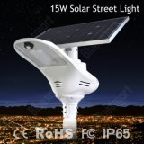 Taux de conversion élevé de Bluesmart des réverbères solaires du rayonnement de Sun 15W