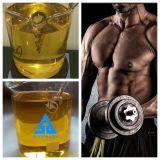 Het Propionaat van het testosteron voor Bodybuilding