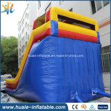 El carril doble comercial del PVC embroma la diapositiva inflable gigante para la venta