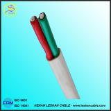 PVC de cobre do condutor isolado e fio liso BVVB da bainha 3*10mm2