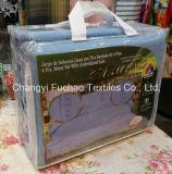 La poly literie place l'édredon et les taies d'oreiller à la maison de textile