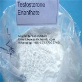 Prueba segura Enanthate del esteroide anabólico de la salida 315-37-7 para la masa del músculo