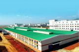 Alameda de compras prefabricada del taller/Bridge'/del palmo del doble de la estructura de acero del edificio del diseño de la construcción