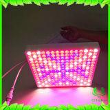 Glebe LED wachsen hell, 50W IP65 wachsen Pflanze mit vollem Spektrum für Innenpflanzengewächshaus und das Wasserkulturwachsen hell