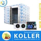 Neues Produkt-Kühlraum für Obst- und GemüseChina-Goldlieferanten