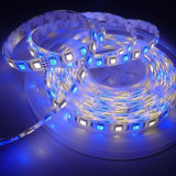 5m 5050 SMD RGBW RGB& Cool Warm White 300 LED Flexible Strip Christmas Lights