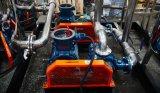 Edelstahl-Biogas-Wäscher-/De-Sulphur-System/Biogas reinigen System/Biogas Vorbehandlung-System