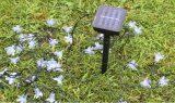 Luz Sakura de la cadena de la energía solar LED/flor de cereza para la Navidad Lh-Sy20