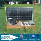 Sistema de irrigação solar do uso de água e da bomba de água da energia eléctrica