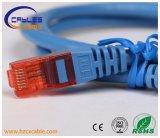 Cuerda de corrección CAT6 con la prueba de la platija del paso de los conectores de UTP