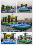 子供の大人のゲームプール(MIC-275)が付いている膨脹可能な水スライド