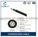 중국 공장 가격 내화성 광학 섬유 케이블 좋은 으깸 저항하는 PSP 강화 방습 Gjfzy53 Fr G652D 광섬유 케이블