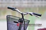 Roller der Rad-350With500W 3 mit dem tragenbeutel