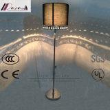 Lampe d'étage noire décorative de modèle de fantaisie d'ombre d'hôtel européen