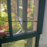 acoplamiento gris del insecto de la fibra de vidrio del color 115g (Facotry)