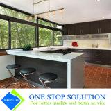 De klassieke Kabinetten van het Meubilair van de Keuken van het Ontwerp Modulaire (ZY 1013)