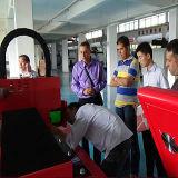 machine de découpage de laser de fibre de pipe de 500W- 2000W