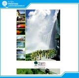 Farbenreiches glattes A1 Kunstdruckpapier-Plakat-Drucken