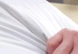 El pato blanco de la sensación suave del hotel de lujo abajo soporta