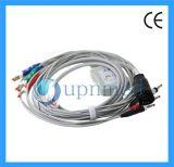 Cable del terminal de componente EKG de los Defibrillators 10 de Zoll, plátano 4.00m m