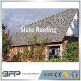 Le revêtement gris d'ardoise de toiture couvre de tuiles des matériaux de construction