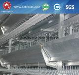 Jaula de colocación del pollo con el sistema de la ventilación y de calefacción (A-3L90)