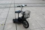 Bescheinigungs-elektrisches Dreirad 48V 500W, preiswertes elektrisches Dreirad, heißer Verkaufs-Sonnenenergie-Roller