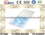 Горячая штемпелюя панель стены PVC потолка PVC панели PVC