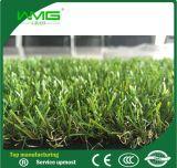 I favoriti confrontano l'erba artificiale, erba del giardino di quattro colori