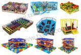 Plastic Dia's van de Apparatuur van de Speelplaats van jonge geitjes de Binnen voor Verkoop