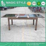 Openlucht Eettafel met Eettafel van de Rotan van het Systeem van de auto-Uitbreiding (195/255) Functionele (Magische Stijl)