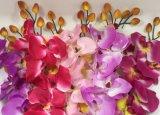 Orchidea falsa di seta poco costosa dei fiori artificiali per i grossisti domestici della decorazione di cerimonia nuziale