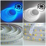 tira SMD5050 22-24lm/LED da luz do diodo emissor de luz de 230V 110V 220V impermeável