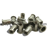 Noix Hex principale plate de rivet d'acier inoxydable