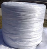 PP 충전물 털실 (0.5--싼 가격에서 20mm)