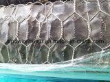 電流を通された終了する六角形の網、金網