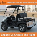 150cc / 200cc / 250cc 4 Stroke UTV for Adults Sports